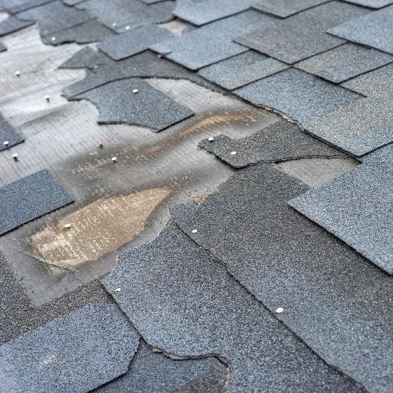 damaged roof and shingles