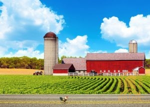 Roofing for Agricultural Buildings